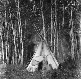 A Chipewyan Tipi Among the Aspens Edward S Curtis