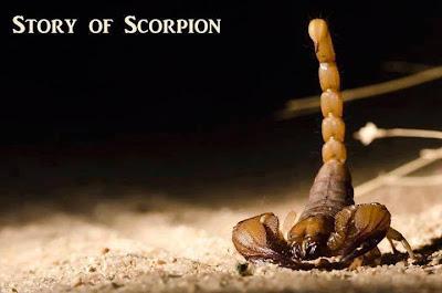 STORY -- THE SCORPION