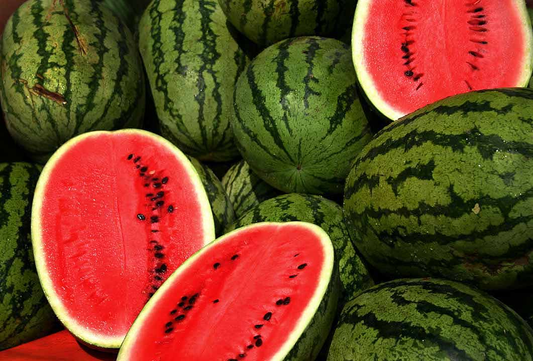 Watermelon both red and yellow fleshed sometimes called icebox melons