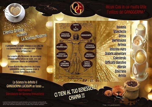 Pieghevole Informativo-Pubblicitario per ORGANO GOLD (RETRO)