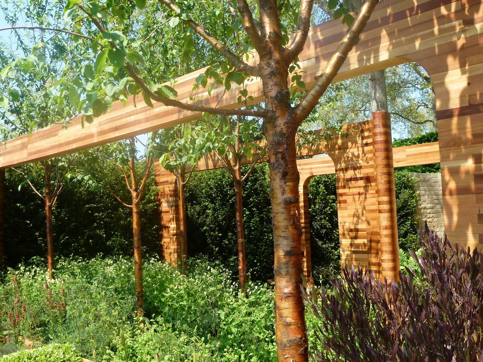 Iced vo vo 39 s homebase chelsea flower show for Garden trees homebase