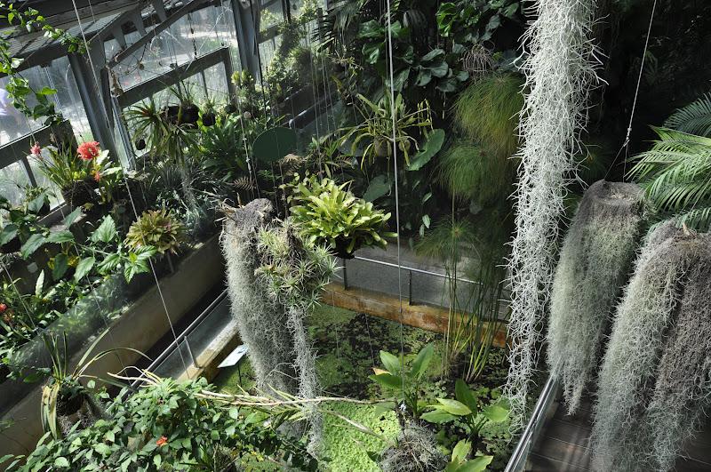Madrid con ni os el jardin bot nico quiero ver mundo for Jardin cactus madrid
