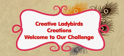 creative ladybirds creations