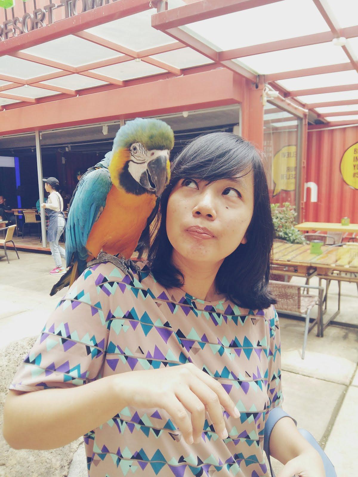 Travel to Bandung,  2015