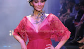 Sonam kapoor in ramp pictures