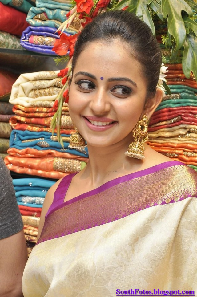 Rakul Preet Singh in Saree Photos