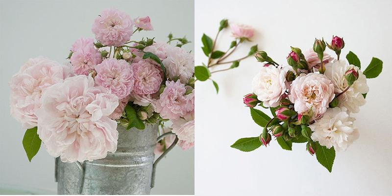 Fotos Ramos De Flores Silvestres - Cómo hacer un ramo de flores para regalo