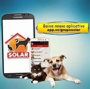 Baixe nosso aplicativo para celular!
