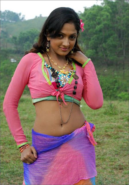 Hot Tamil Actress Sheela photo