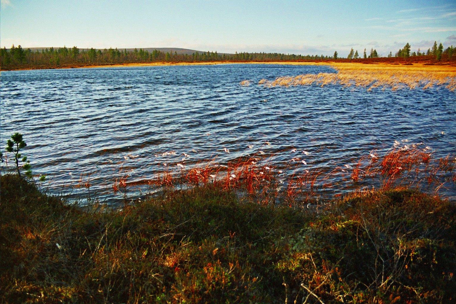Lemmenjoki-2005-10