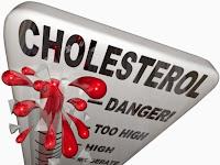Tips Menjaga Kadar Ldl Kolesterol Dan Hdl Kolesterol Yang Normal