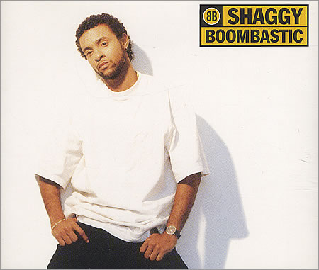 NUMBER ONES OF THE NINETIES: 1995 Shaggy: Boombastic