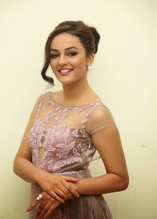 Actress Seerat Kapoor Pictures in Long Dress at Tiger Audio Launch 14.JPG