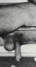 beleza e registro sensuais   por luiz freitas 09 victor