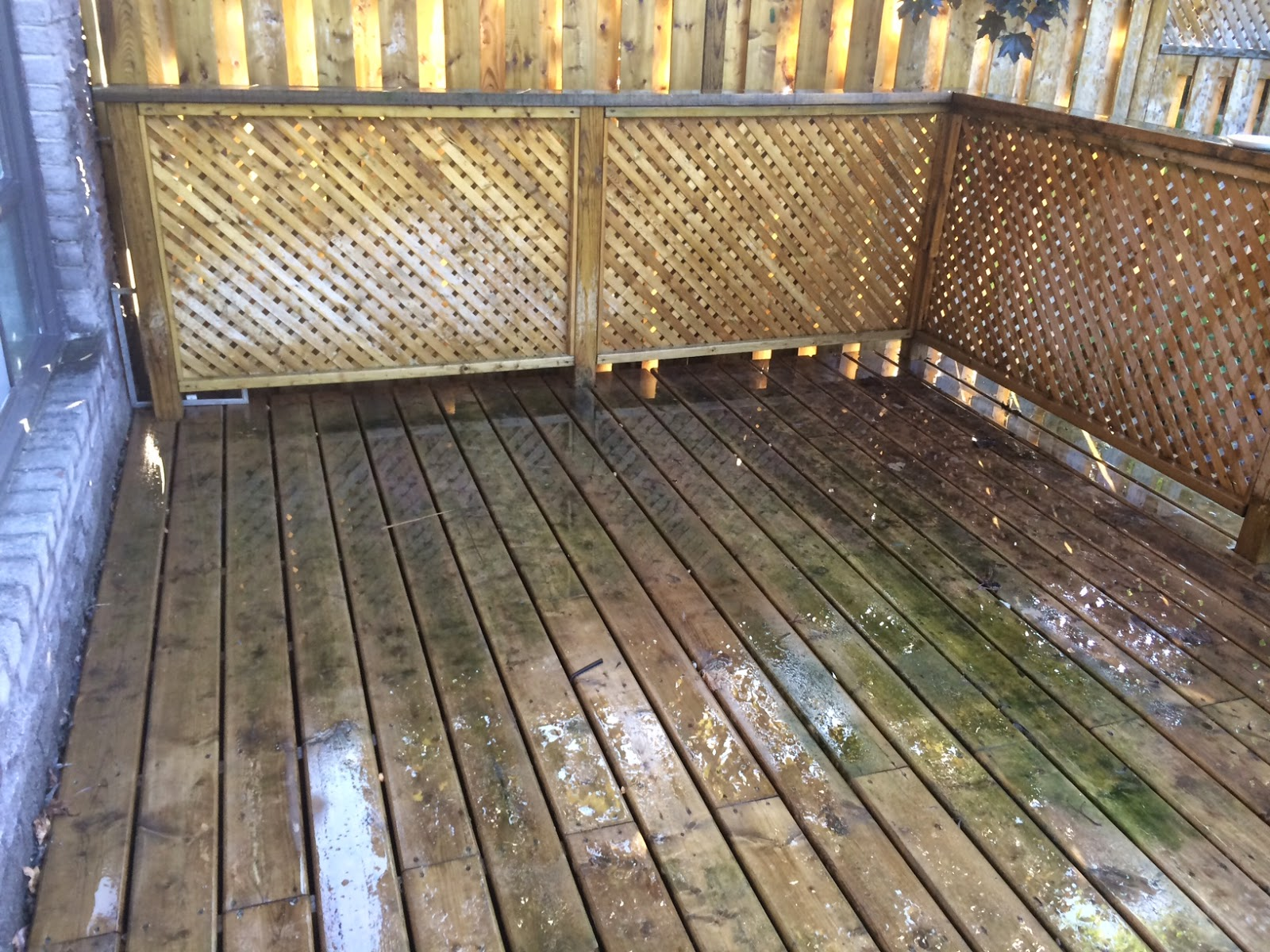 Erin Mills Paint Decor Centre Inc Home - Before clean must be applied to a wet surface i sprayed the entire deck with my garden hose before using the diluted clean solution