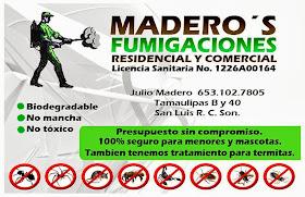 FUMIGACIONES MADERO'S