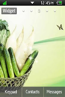 General Healthy, Vegetables, Fruits Samsung Corby 2 Theme 4 Wallpaper