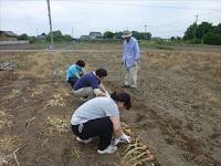 農作体験1