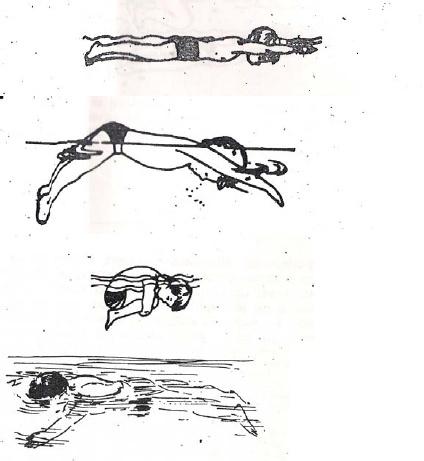 El mundo de la natacion ejercicios para aprender a flotar for Ejercicios piscina espalda