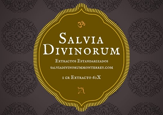 Extractos de Salvia Divinorum 60X