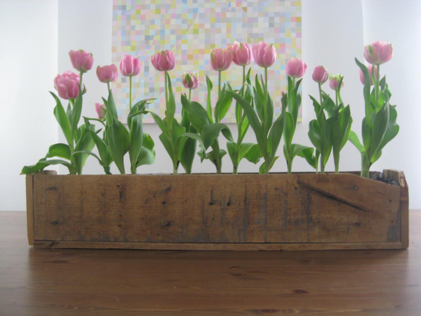 I am Davidj Wood Pallet Flower Box