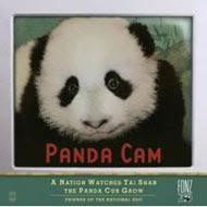 Ver Panda Cam 2 en vivo