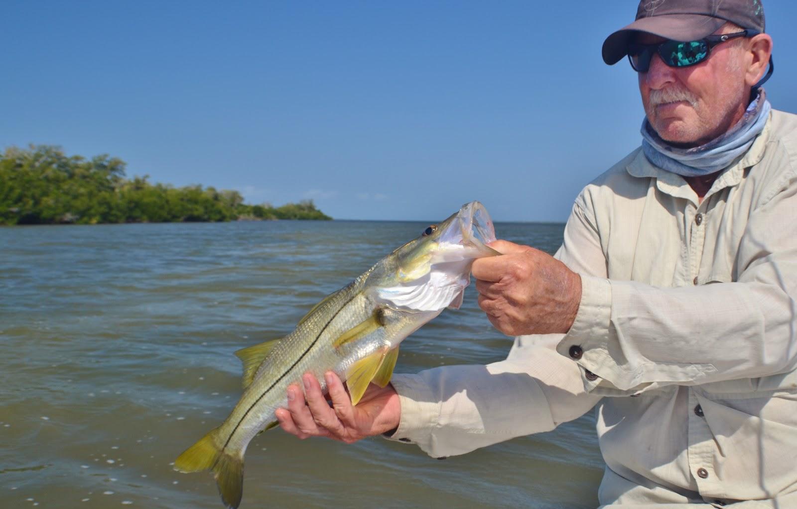 Pine Island Florida Snook Fishing