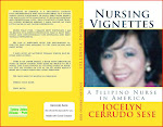 Nursing Vignettes book