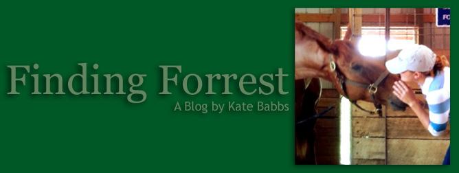 Finding Forrest