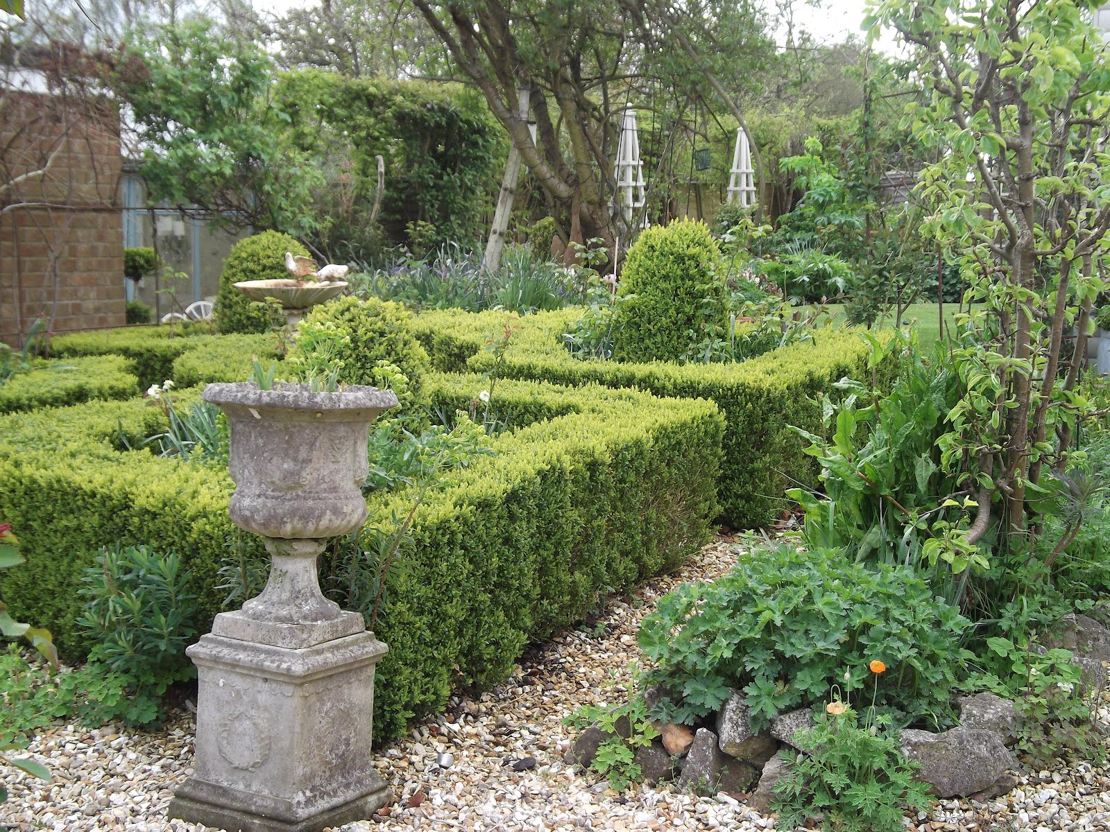 Landscape Evergreen Topiary