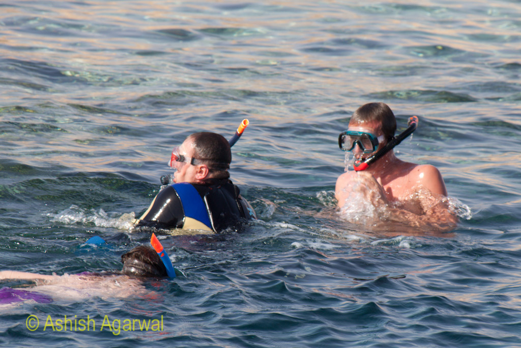 Determining the direction in which we wanted to swim towards the coral reefs