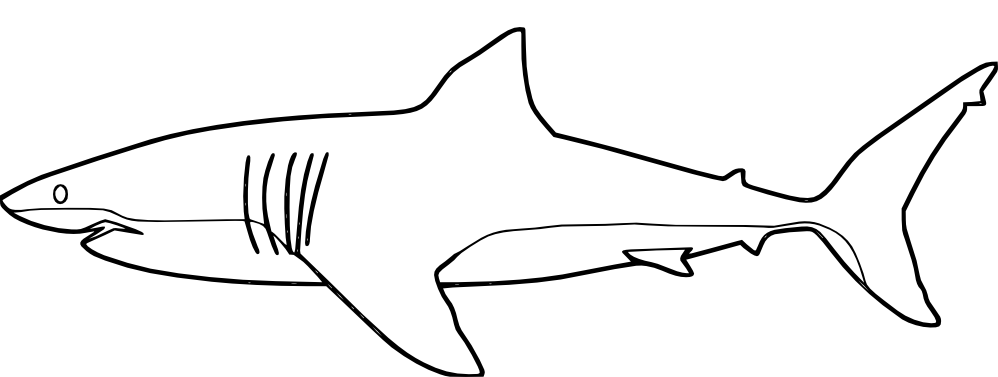 sharks coloring pages - photo#23
