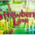 Replay: Strawberry Lane October 22, 2014 FULL EPISODE