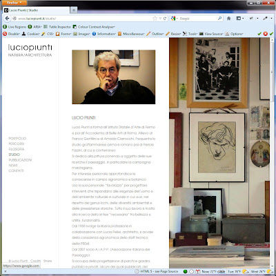 Screen shot of http://www.luciopiunti.it/studio/.