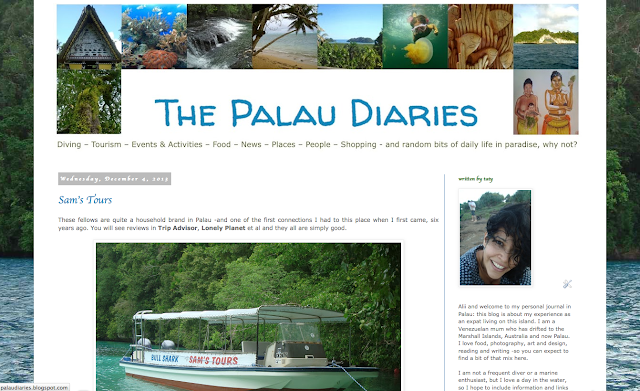 The Palau Diaries