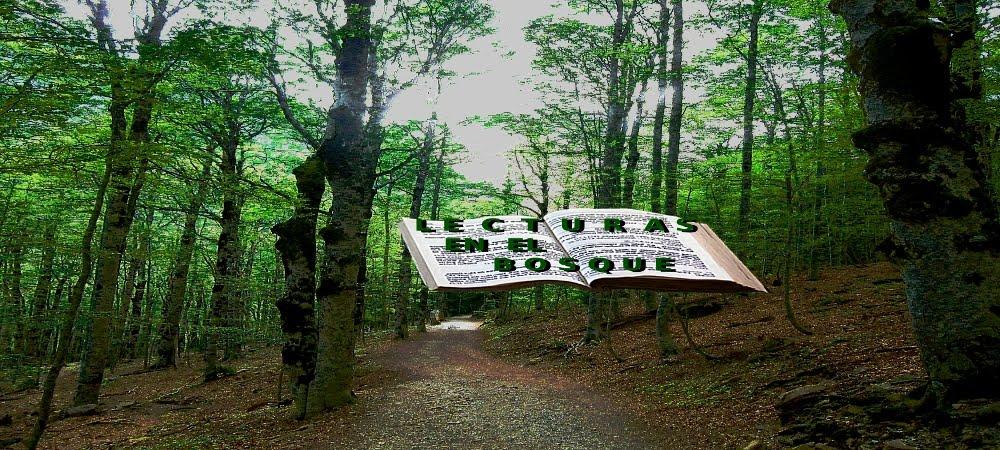 Lecturas en el Bosque