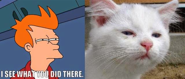 22 Meme Internet: I see what You did there Cat - Fry meme
