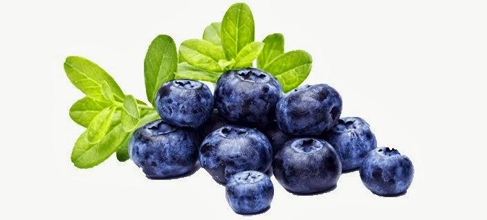 blåbärs effekt på magen