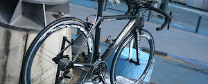 AZIONE CARBON CYCLES