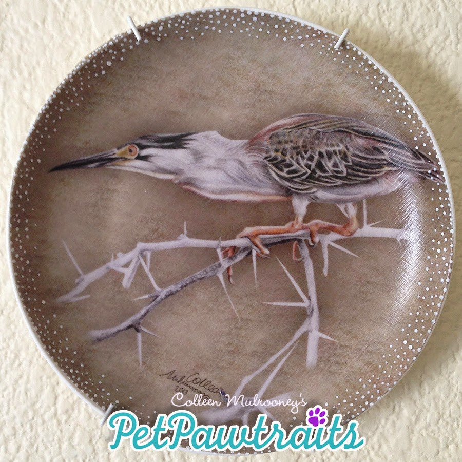 South African Birds :: Giant Heron::  Coloured pencils, decoupage, hand finished
