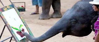 Foto Gambar Gajah