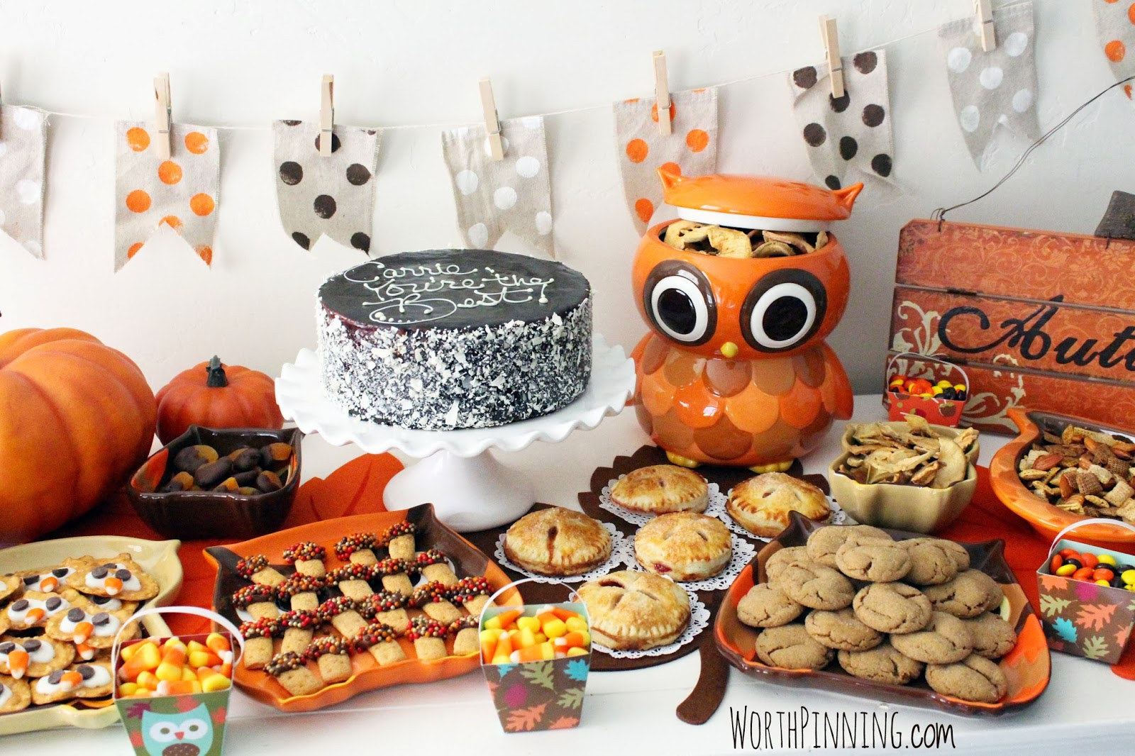 autumn owl treat fall - photo #10