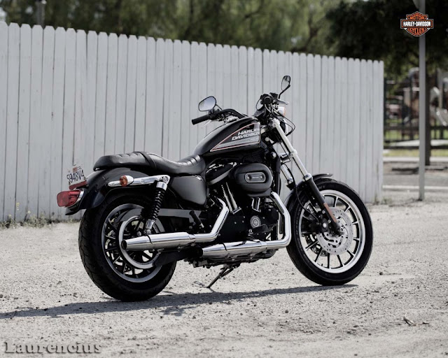 Harley-Davidson-12-883-roadster-bs