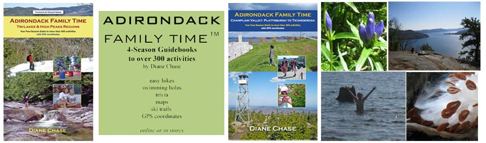 Adirondack Family Time™: Four-Season of Activities