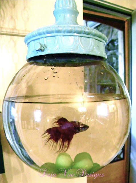 Bowl for a betta fish