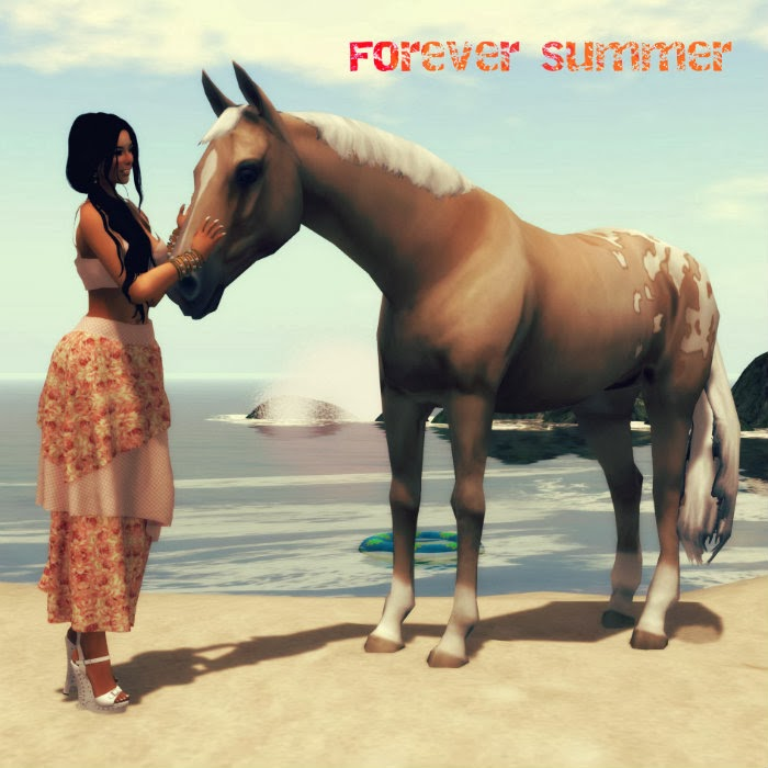 FOREVER SUMMER Beachstore
