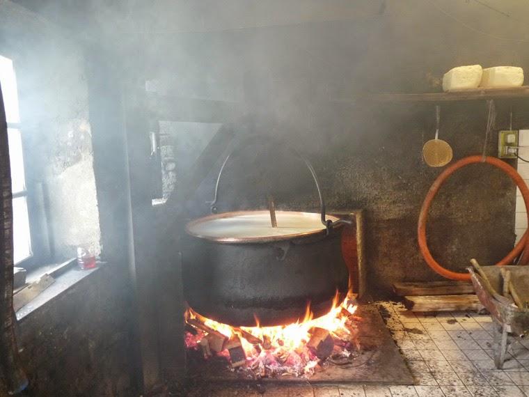 ボーフォール チーズ ツール・ド・モンブラン グラシエ村