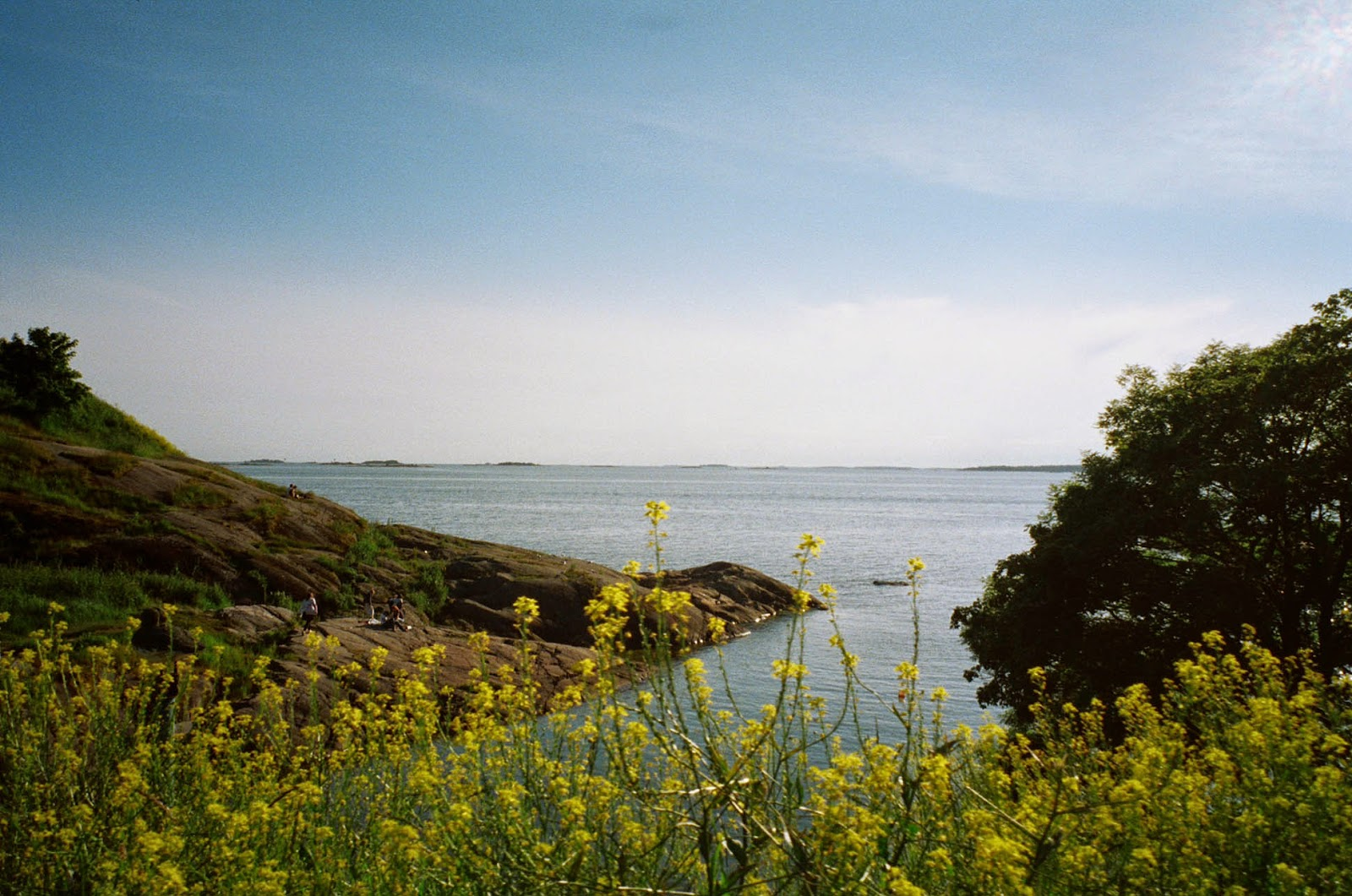 Suomenlinna Finland Summer Nature