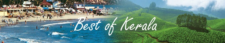 http://www.flamingotravels.co.in/india-tour-packages/kerala/single/kerala-tour-packages.html
