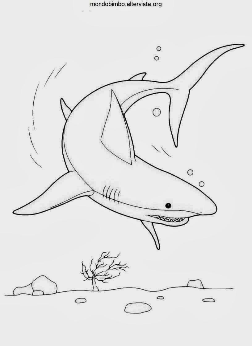 Disegni di pesci da colorare for Immagini di pesci da disegnare